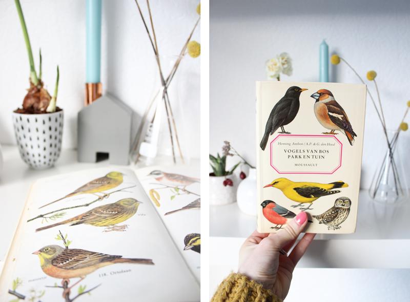 kringloopvogelboeken