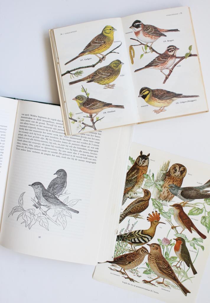 vogelboeken2