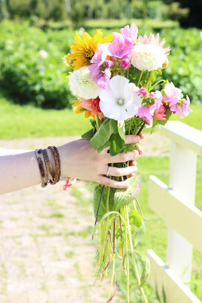 bloemen-plukken-texel
