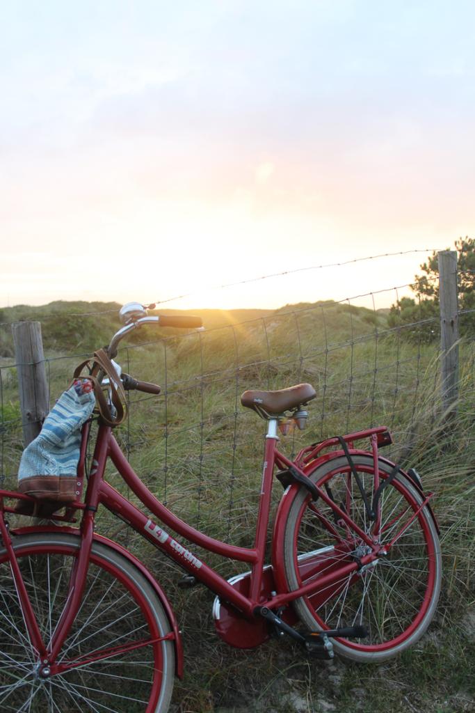 fiets-duinen-texel