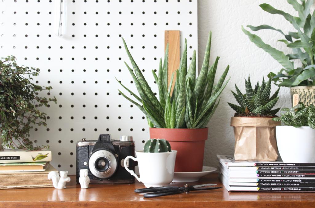 plantenkastje-urj